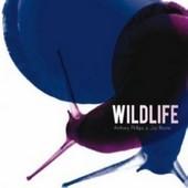 Anthony PHILLIPS – Wildlife